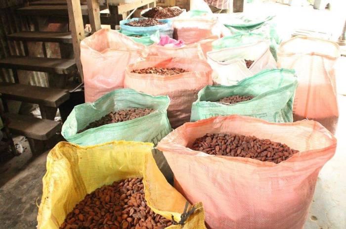 Hiraya Chocolates 7